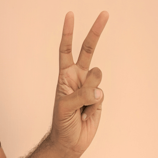 the hand gestures to