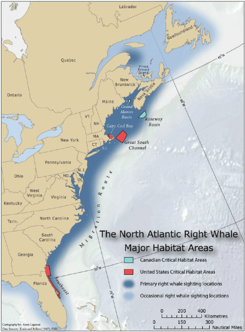 small resolution of range and habitats of the north atlantic right whale eubalaena glacialis image used