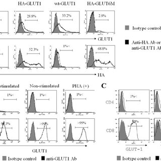 (PDF) GLUT1 Is Not the Primary Binding Receptor but Is