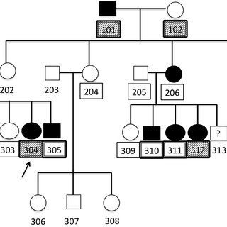 (PDF) Genetic Candidate Variants in Two Multigenerational