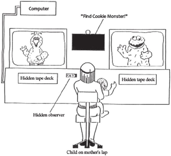 The Intermodal Preferential Looking Paradigm (Golinkoff