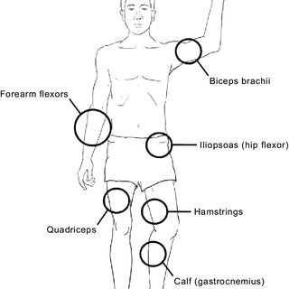 (PDF) Exercises for People with Hemophilia