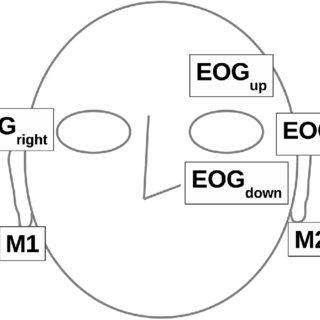 Block diagram of the algorithm. The algorithm consists of