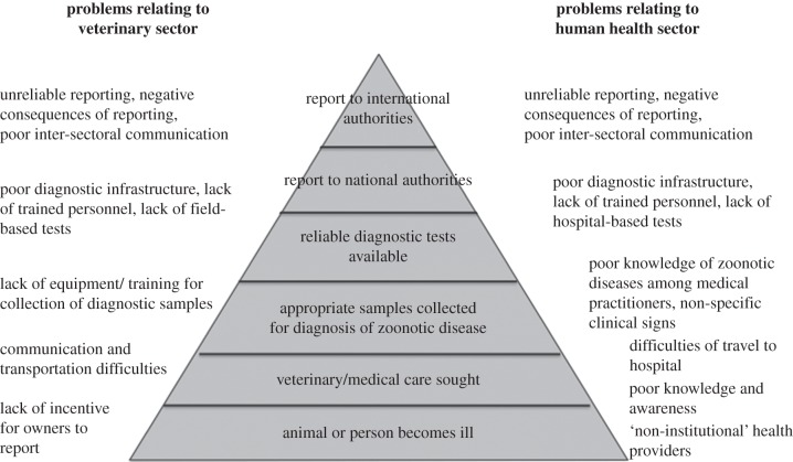 Factors contributing to the underreporting of zoonotic disease ...
