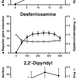 (PDF) The antimycotic ciclopirox olamine induces HIF-1α