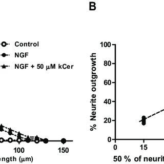 (PDF) Konjac Ceramide (kCer) Regulates NGF-Induced Neurite