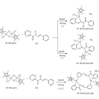 Docking structure of thymidylate phosphorylase enzyme