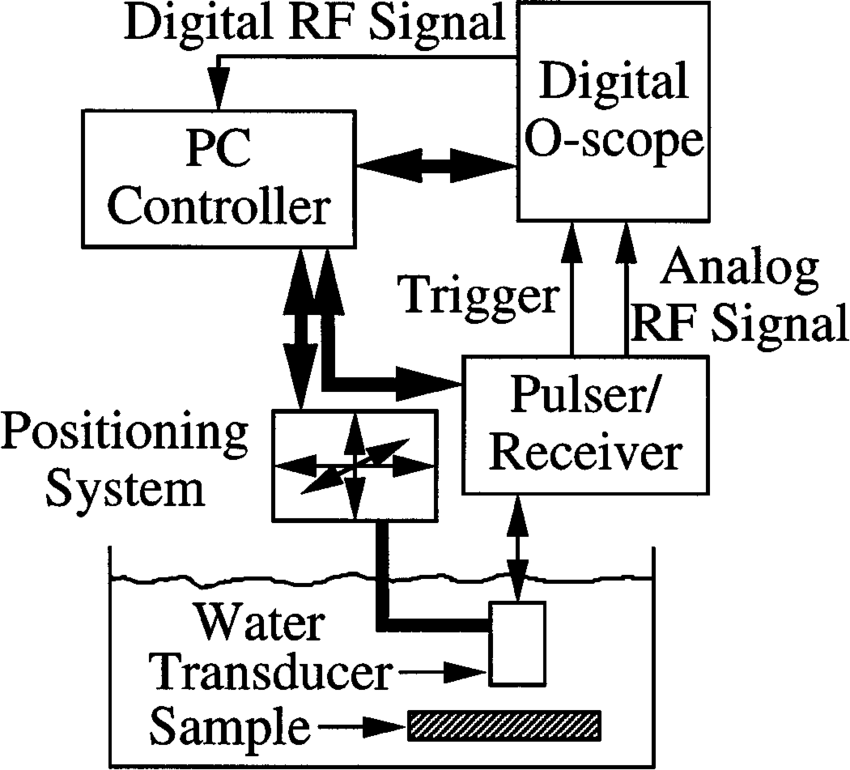 System block diagram. The bold lines with arrows at both