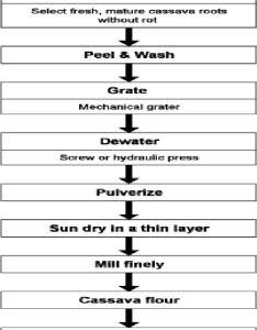 Process flow chart for high quality cassava flour master plan also rh researchgate