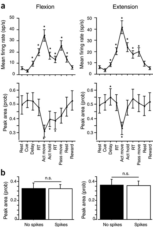 Sensory input to primate spinal cord is presynaptically