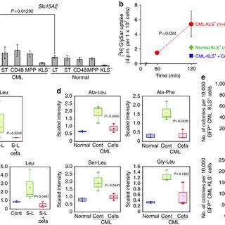 (PDF) Dipeptide species regulate p38MAPK-Smad3 signalling