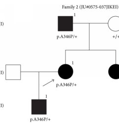 fundus photographs optical coherence tomography oct images and visual fields with goldmann [ 850 x 1669 Pixel ]