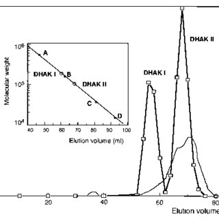 Chromatography of DHAKs on Superdex 200pg. The inset shows