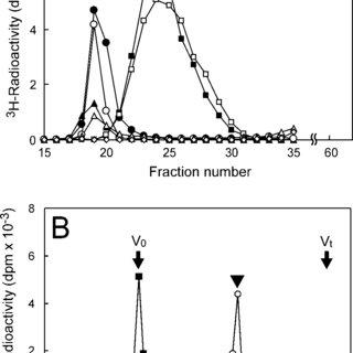 (PDF) In Vitro Heparan Sulfate Polymerization: Crucial