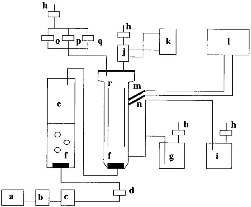 Layout of airlift and bubble column-type bioreactor. a