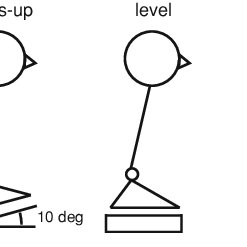 Schematic diagrams of the experimental set-up and
