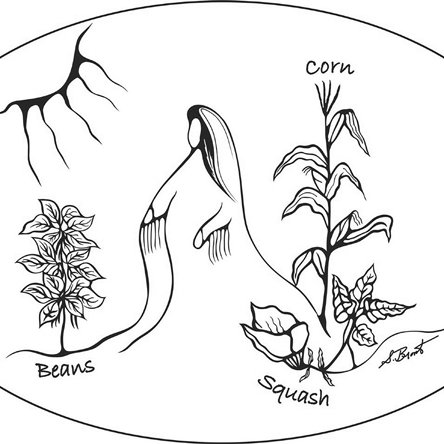(PDF) Plant persons, more-than-human power, and