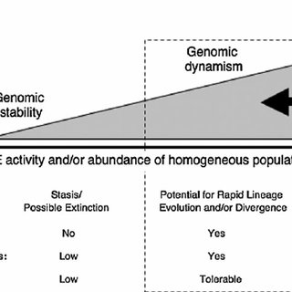 (PDF) The Genomic Drive Hypothesis and Punctuated