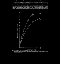 correlation of b pertussis w28 x mode adhesion to hela cell download scientific diagram [ 850 x 1150 Pixel ]