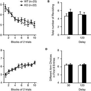 (PDF) Comprehensive Behavioral Phenotyping of Ryanodine