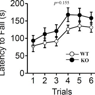 Normal growth of relaxin-3 KO mice. The body weight in the