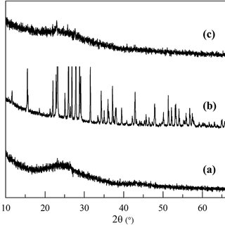N 2 adsorption–desorption isotherm plot of (a) NSG, (b