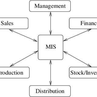 Functions Of Management Information System Pdf