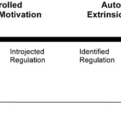 (PDF) The Behavioral Regulation in Sport Questionnaire