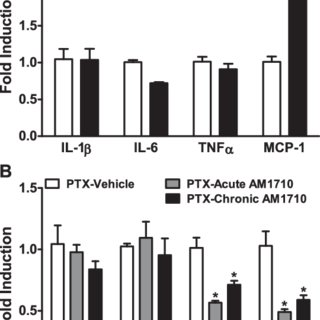 (PDF) Chronic cannabinoid CB2 activation reverses paclitaxel neuropathy without tolerance or CB1