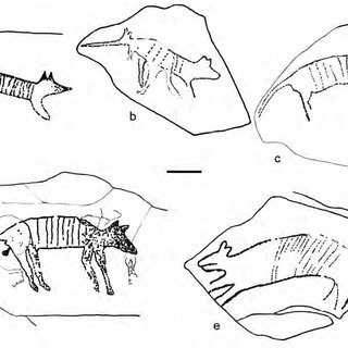 (PDF) Dating the Dreaming: Extinct Fauna in the