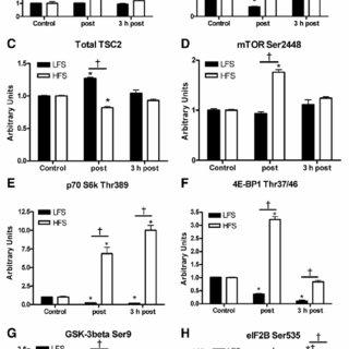 (PDF) Selective activation of AMPK-PGC-1alpha or PKB-TSC2