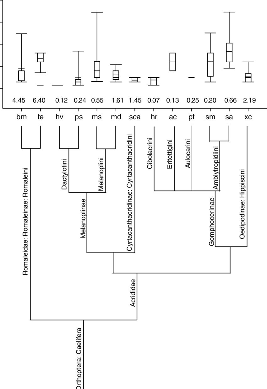medium resolution of box plot of p c for 13 species of grasshopper numbers at the bottom of
