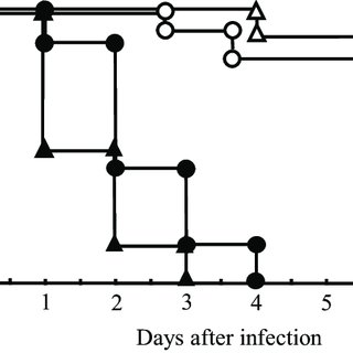 (PDF) Enterococcus faecalis translocation in mice with