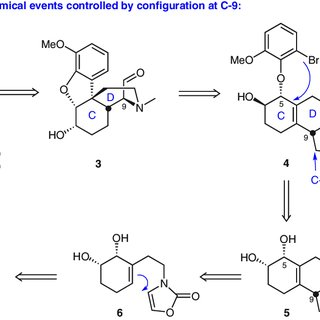 (PDF) Design for Morphine Alkaloids by Intramolecular Heck