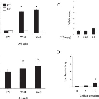 (PDF) Characterization of Wnt2 Overexpression in a Rat