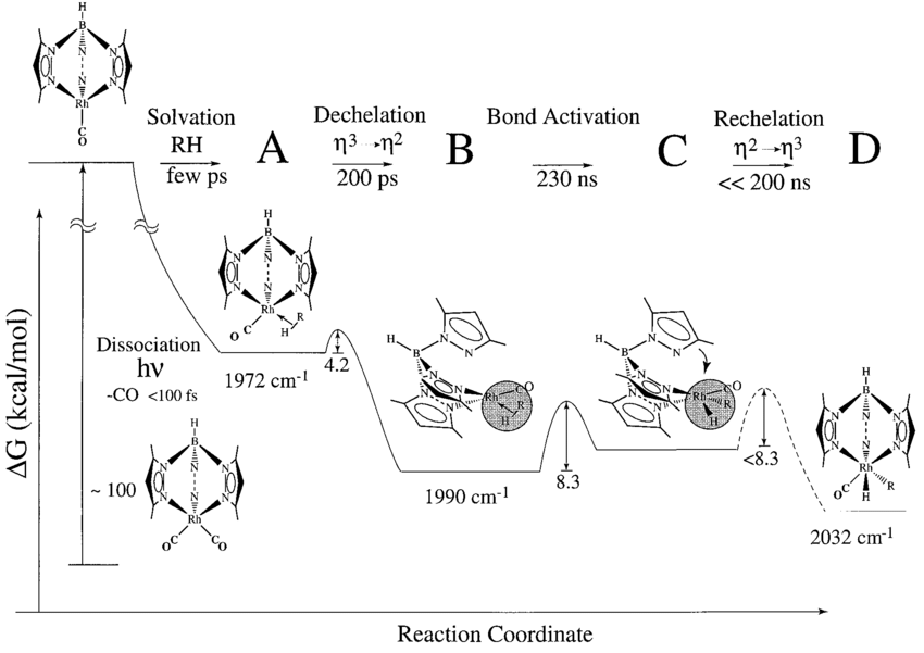 Proposed mechanism and energy diagram for the C-H