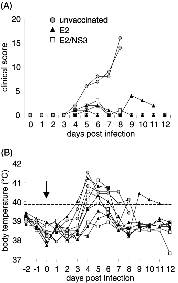 hight resolution of clinical scores a and body temperatures b of pigs vaccinated against csfv