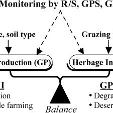 (PDF) Grassland degradation in China: Methods of