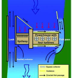 schematic plan view of a hydropower dam showing upstream and downstream fish passage facilities [ 850 x 1047 Pixel ]