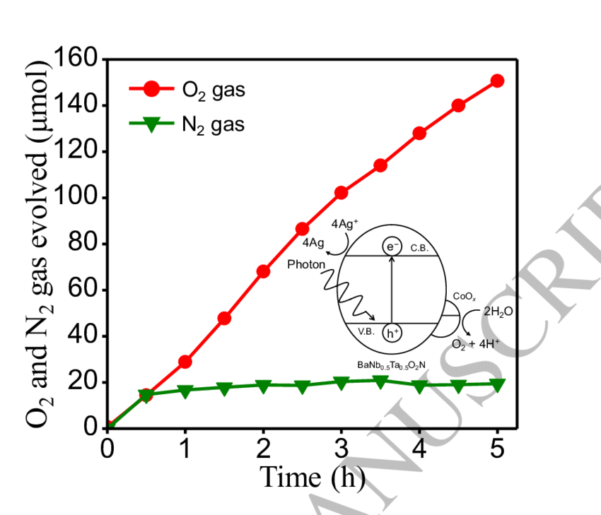 Reaction time courses for O 2 and N 2 gas evolution from