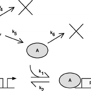 (PDF) Statistical mechanical approach to models with many