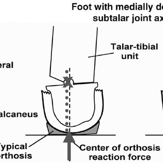 Mobility assessment of some typical lower joints: the