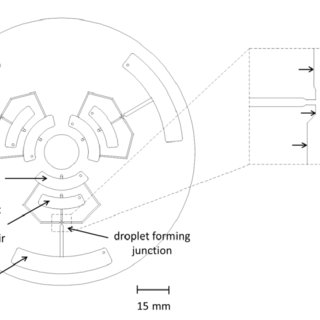 Centrifugal microfluidic device test set-up components (a
