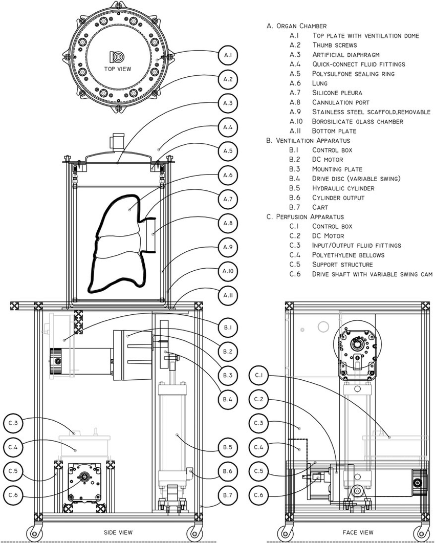 Technical drawings of the bioreactor. The apparatus is