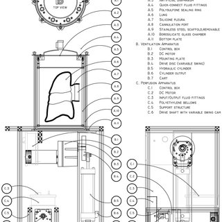 (PDF) Biomimetic Culture Reactor for Whole-Lung Engineering
