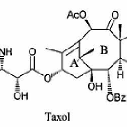 The cloned genes involved in Taxol biosynthesis pathway in
