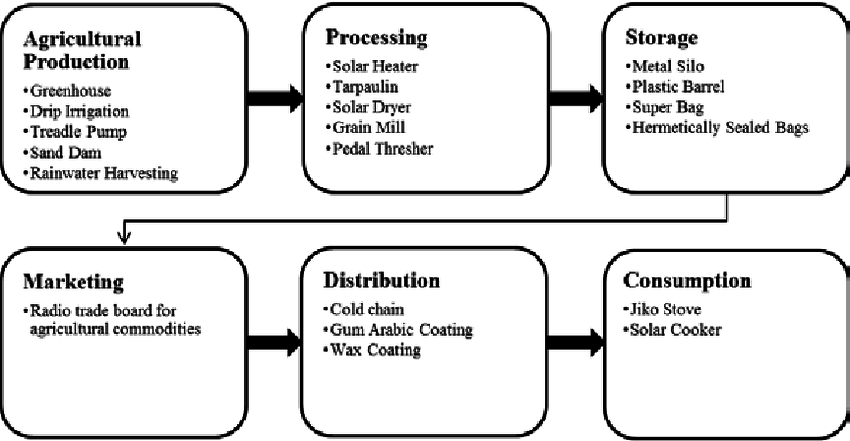 Simplified Food Value Chain with Examples of Relevant