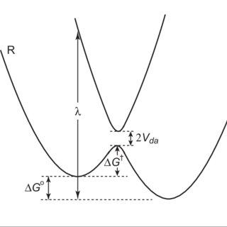 (PDF) A Combined Quantum Mechanics and Molecular Dynamics