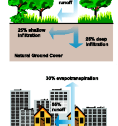 relationship between impervious cover and surface runoff source protecting water quality from urban runoff [ 686 x 1258 Pixel ]