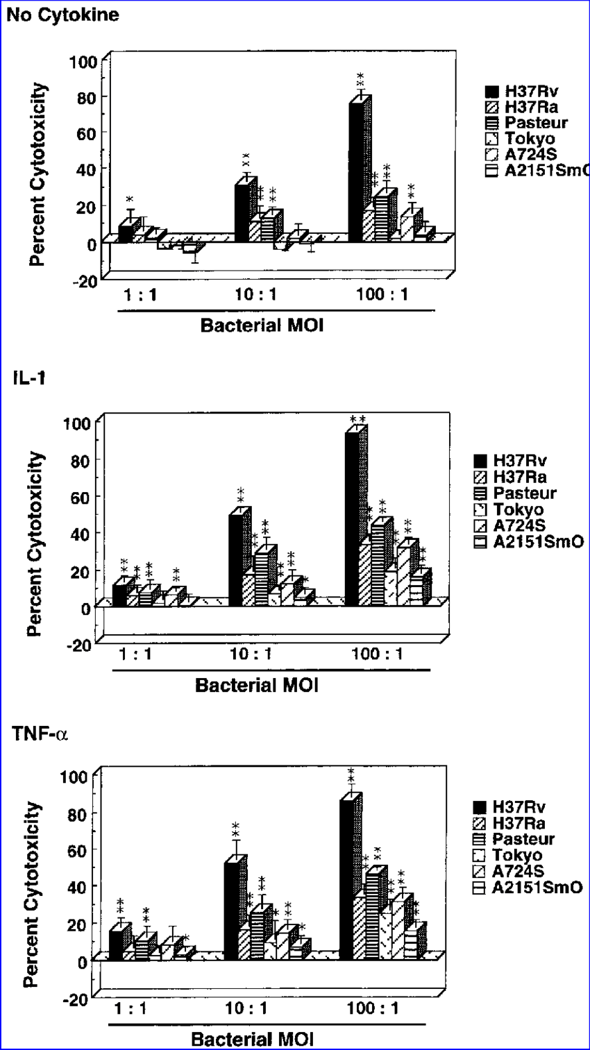 Comparison of the cytotoxicity of virulent and avirulent